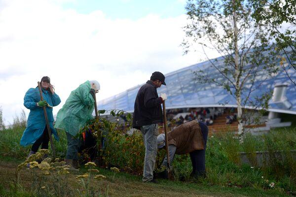 Рабочие сажают цветы в природно-ландшафтном парке Зарядье в Москве