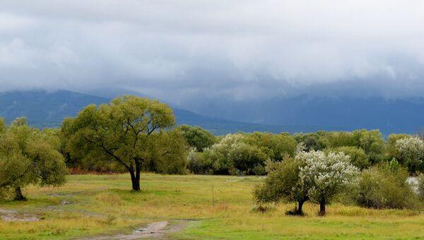 Вид на острове Большой Уссурийский в Хабаровском крае