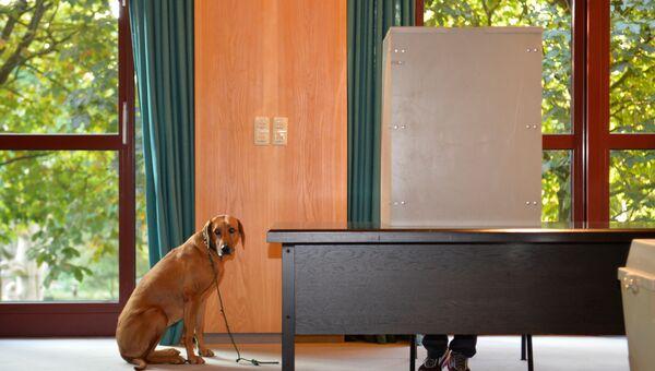 На избирательном участке в Германии. Архивное фото