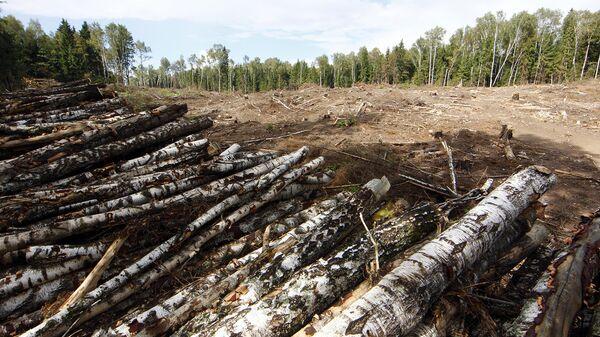 ОНФ выявил экологические нарушения на 132 миллиарда рублей за два года