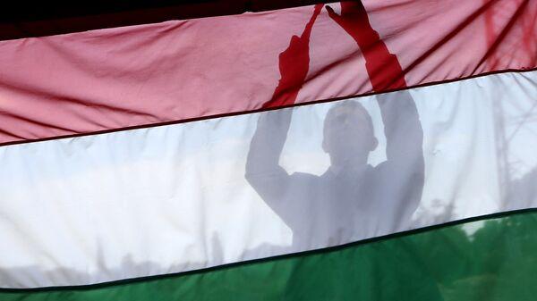 Мужчина на фоне флага Венгрии. Архивное фото