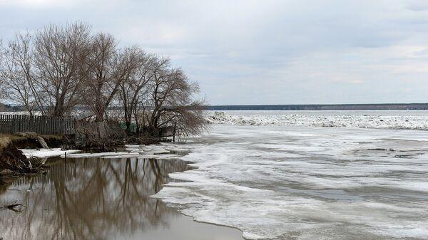 Новосибирское водохранилище очистили от мусора