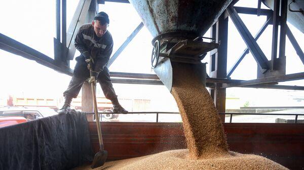 Уборка зерновых в Амурской области