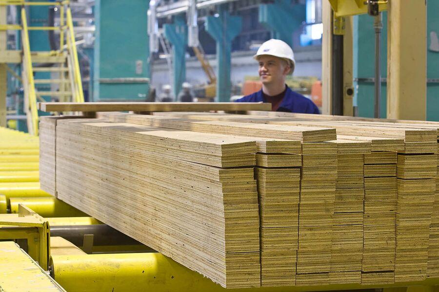 На заводе по производству LVL-бруса