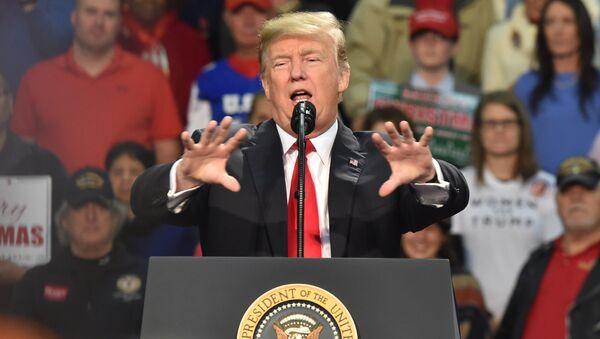 Президент США Дональд Трамп во время выступления в Пенсаколе, Флорида. 8 декабря 2017