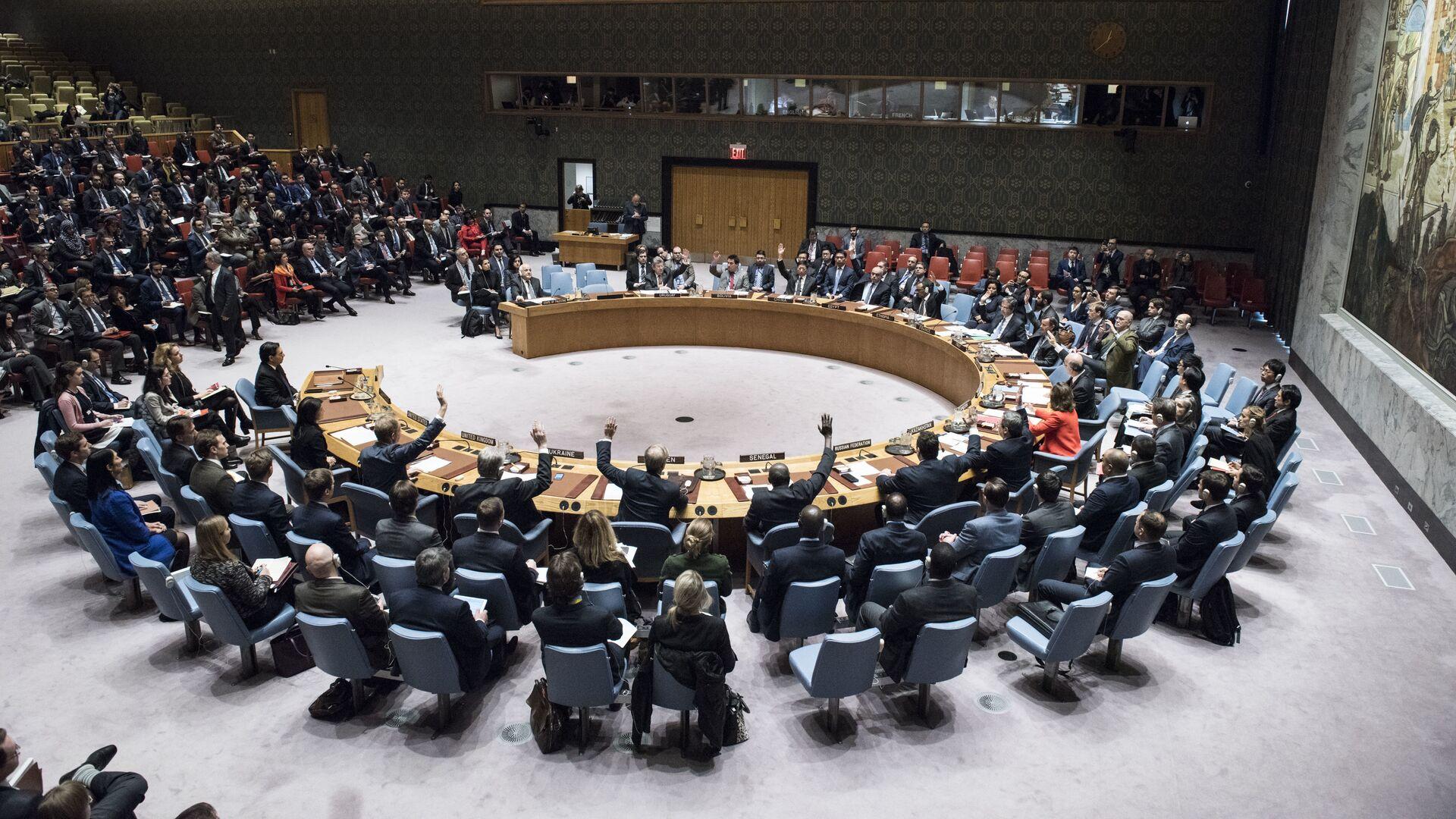 СБ ООН голосует за принятие резолюции о статусе Иерусалима в штаб-квартире ООН. 18 декабря 2017 - РИА Новости, 1920, 26.02.2021
