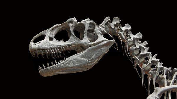 Британские палеонтологи открыли новый вид динозавра