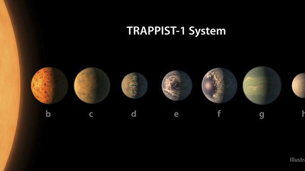 Ученые считают, что у некоторых звезд может быть до семи обитаемых планет