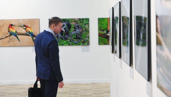 Посетитель V общероссийского фестиваля природы Первозданная Россия в Центральном доме художника в Москве