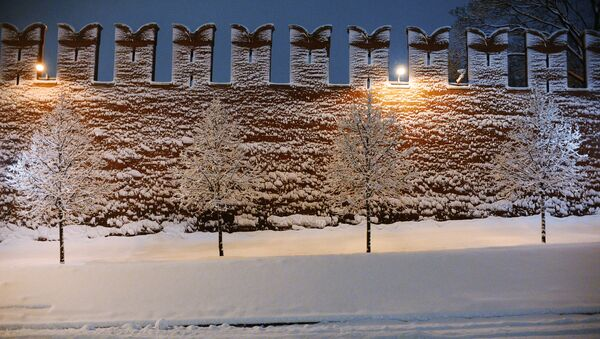 Деревья у стены Московского Кремля. 31 января 2018