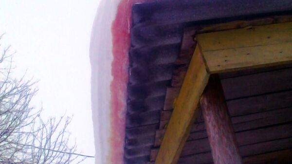 Красный снег в Архангельской области