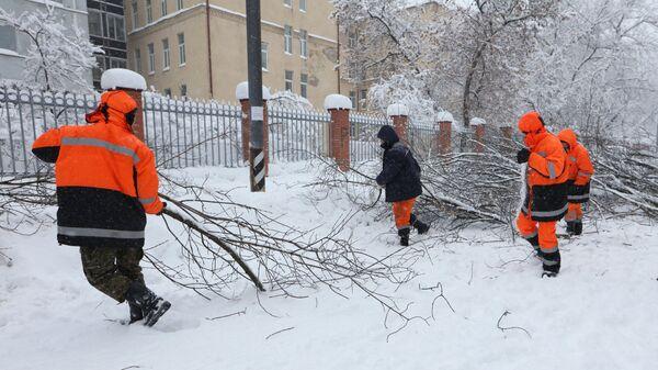 Сотрудники коммунальных служб убирают деревья сломанные в следствии снегопада в Москве. 4 февраля 2018