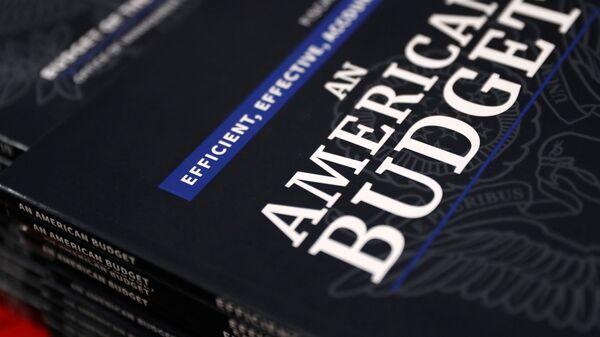 Отпечатанные копии проекта бюджета США на 2019 финансовый год
