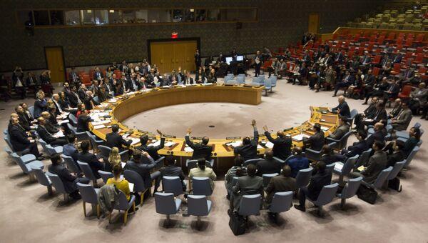 Члены Совета Безопасности голосуют во время заседания Совета Безопасности ООН по вопросу о прекращении огня в Сирии. 24 февраля 2018