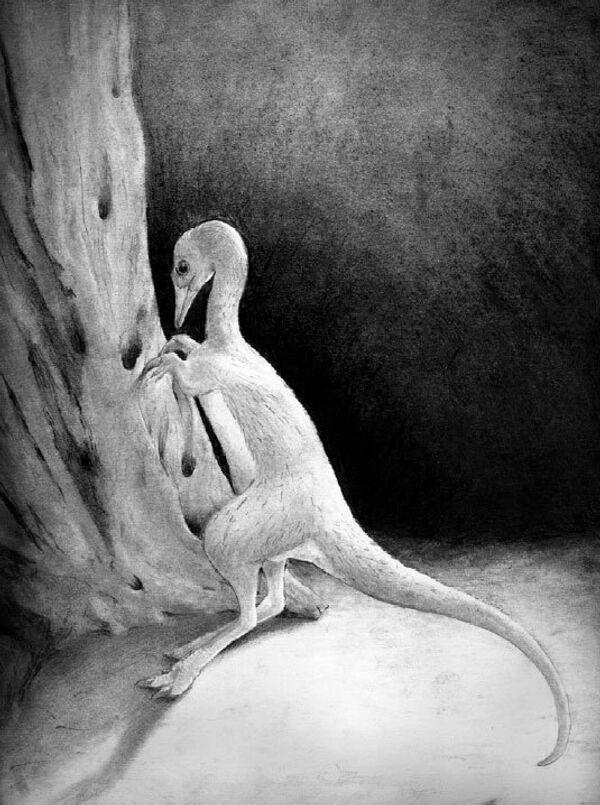 Albertonykus borealis – самый маленький динозавр Северной Америки