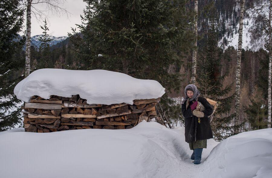 Агафья Лыкова идет с вязанкой дров по своей заимке