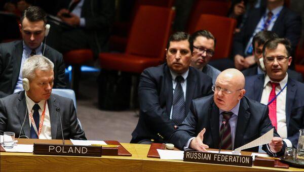 Постпред Российской Федерации при ООН Василий Небензя на заседании совбеза ООН