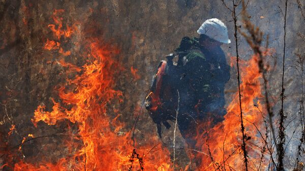 Пожар в Приморье