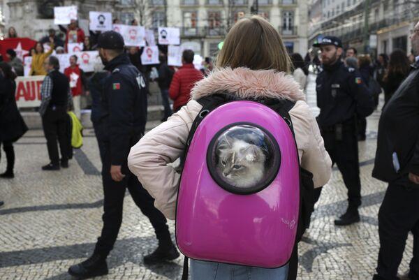 Девушка со своим питомцем наблюдает за демонстрацией в поддержку бывшего президента Бразилии Луиса Инасио Лулы да Силвы в Лиссабоне