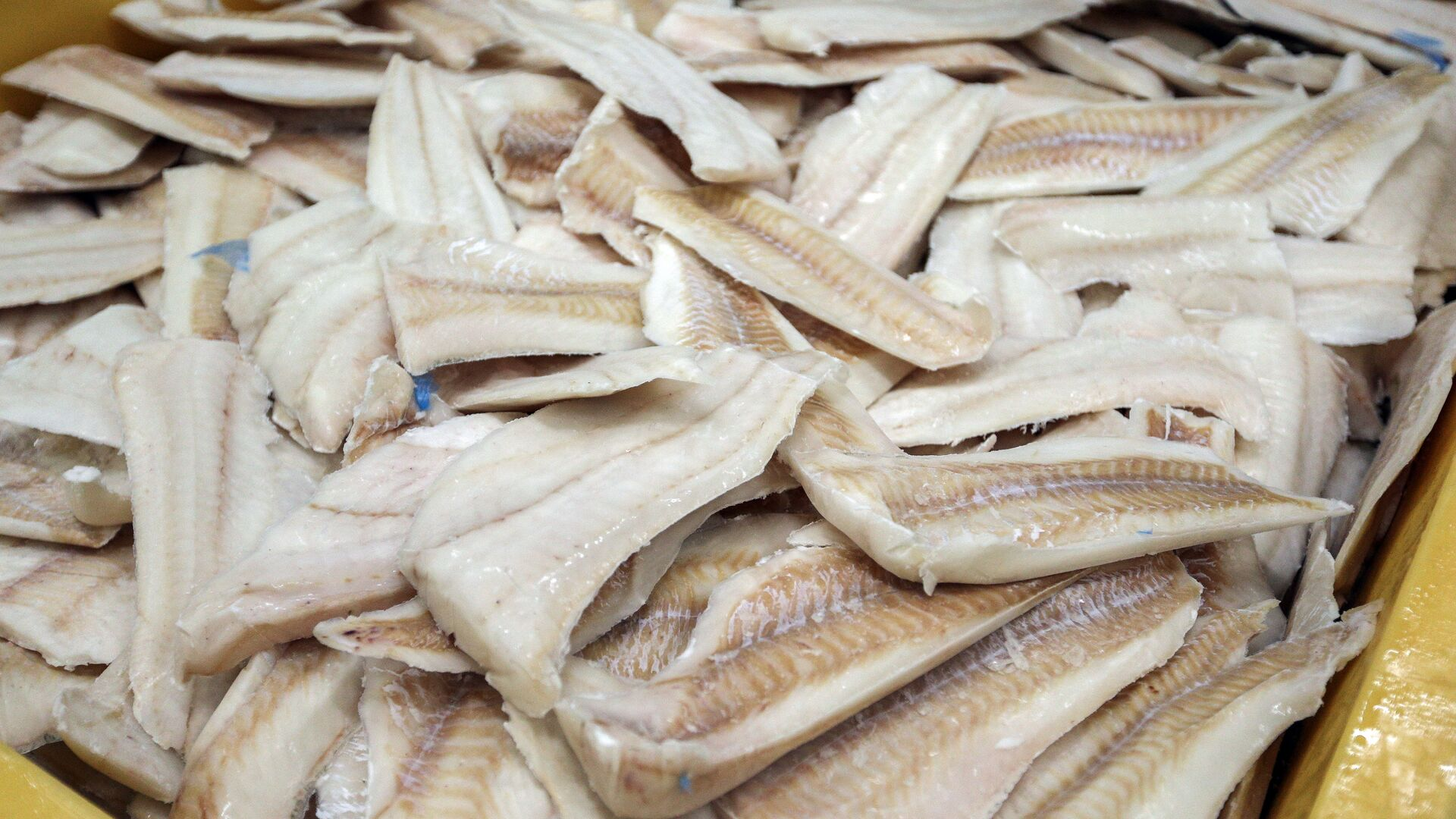 Филе трески в цехе рыбоперерабатывающей фабрики - РИА Новости, 1920, 18.10.2020