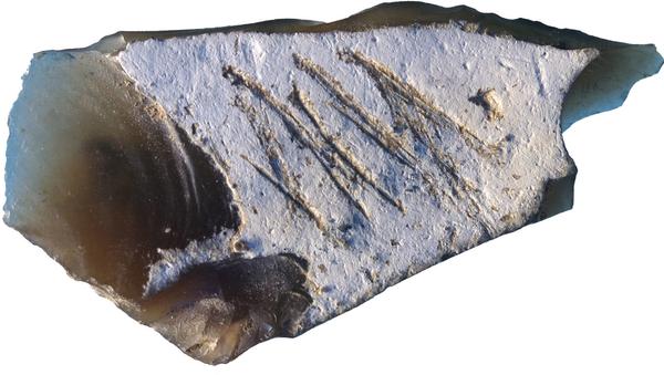 Орудие труда с подписью неандертальца, найденной в крымской пещере Киик-Коба