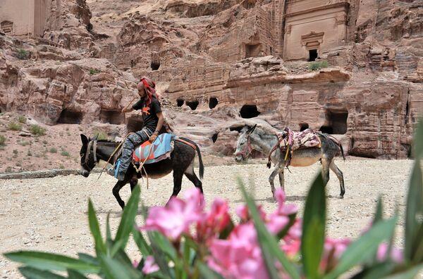 Бедуин с ездовыми осликами в древнем городе Петра в Иордании