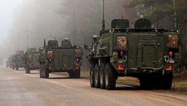 Колонна бронемашин армии США Stryker в Латвии. Архивное фото