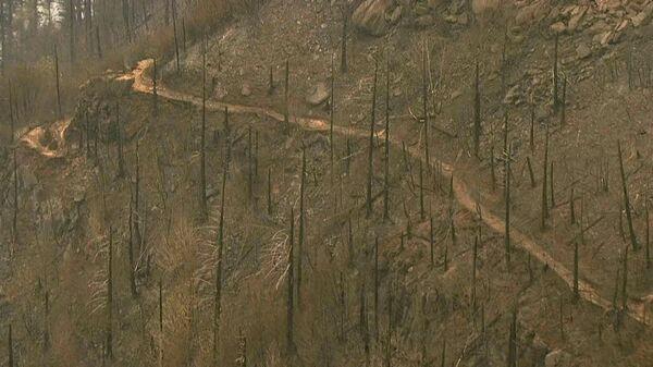 Последствия пожара в Орегоне