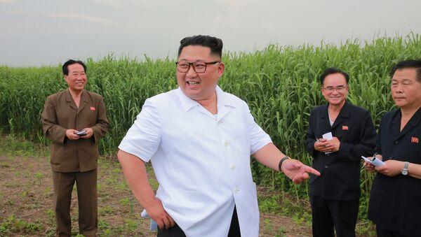 Лидер Северной Кореи Ким Чен Ун инспектирует хозяйство в уезде Синдо в провинции Северный Фионган, Северная Корея