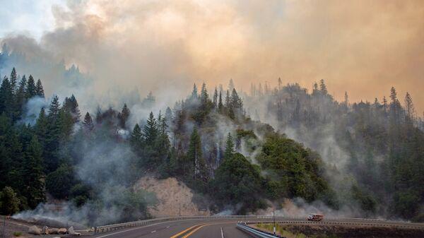 Лесные пожары в штате Калифорния, США