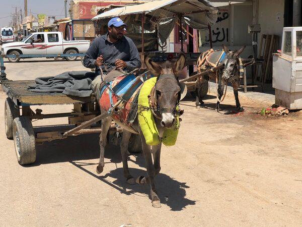 Мужчина управляет повозкой в крупнейшем на севере Иордании лагере для беженцев Заатари