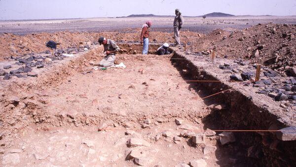 Ученые проводят раскопки на территории стоянки прямоходящих людей в Саудовской Аравии
