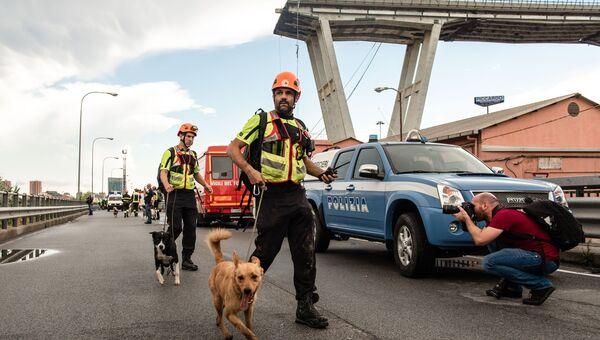 Сотрудники полиции со служебными собаками на месте обрушения автомобильного моста Моранди в Генуе