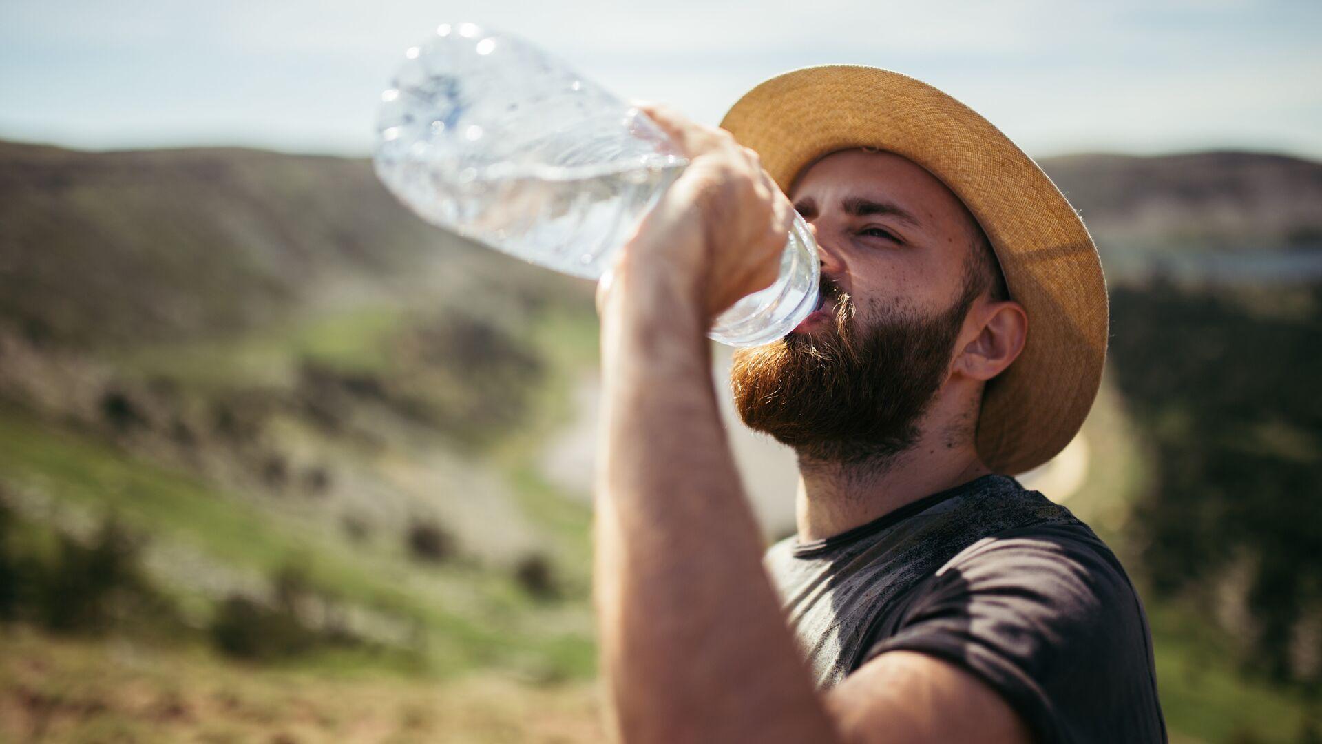 Ученые рассказали, как ветка сосны очистит воду от 99 процентов бактерий