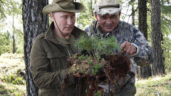 Президент РФ Владимир Путин и министр обороны РФ Сергей Шойгу во время отдыха на Енисее в Республике Тыва