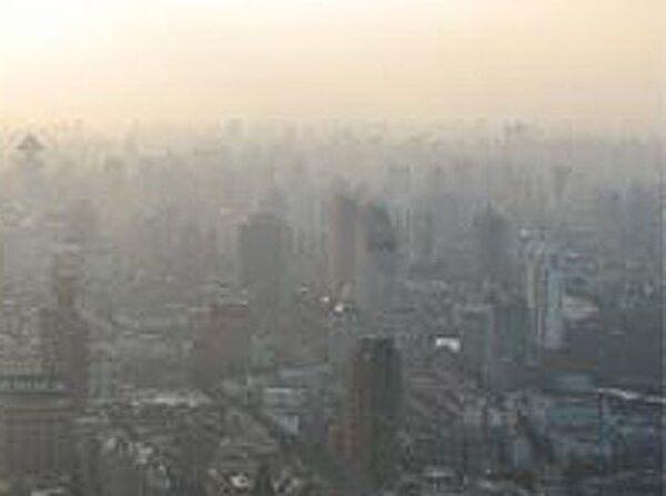 WWF назвал столицы, которым больше всего угрожает изменение климата