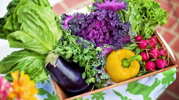 Салат и овощи
