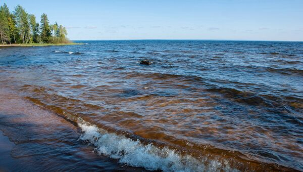 Активисты ОНФ провели уборку на берегах Онежского озера