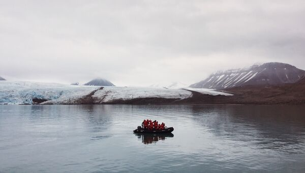 Фронт ледника Норденшельда. Лодка направилась к белому медведю на берегу