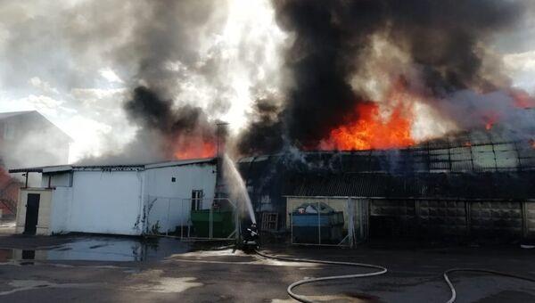 Пожар в совхозе имени Ленина, Московская область. 17 сентября 2018