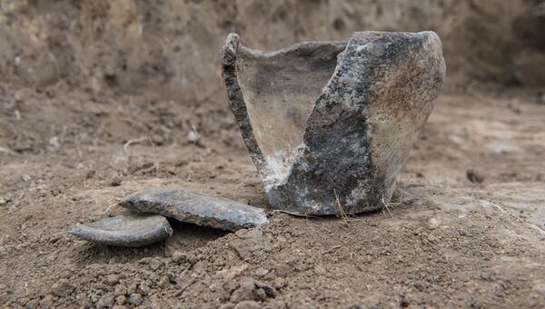 Артефакт, найденный на месте раскопок курганного могильника Киров-3. 2018 год