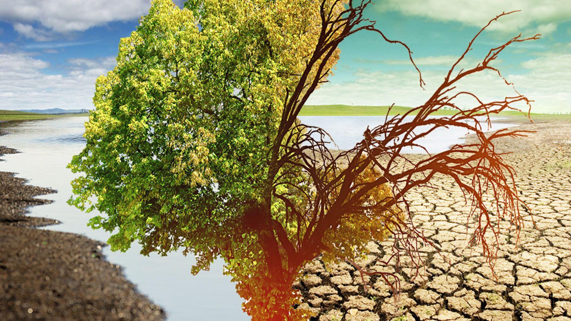 Изменение климата и водные войны - РИА Новости, 1920, 12.11.2020