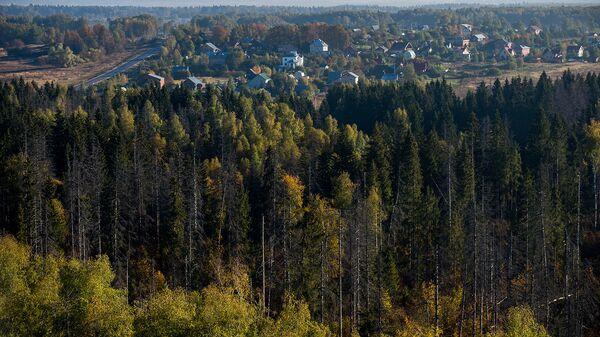 Вид на Рузский район Московской области с высоты птичьего полета. Архивное фото