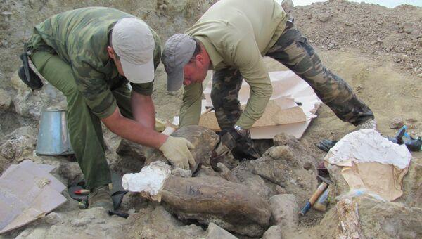 Раскопки в грязевом вулкане Синяя Балка на Таманском полуострове