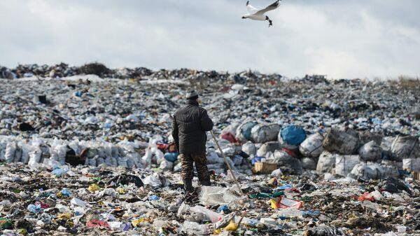 Полигон твёрдых бытовых отходов