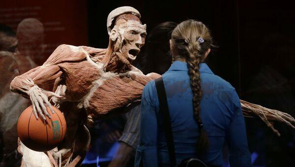 Анатомическая выставка реальных человеческих тел Body Worlds в Милане, Италия