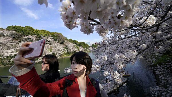 Девушка фотографируется на фоне цветущей сакуры в Токио, Япония