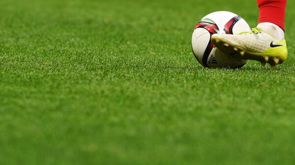 Определились хозяева полей в стыковых матчах между клубами РПЛ и ФНЛ