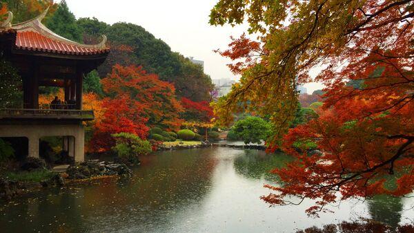 Парк Синдзюку-гёэн в Токио