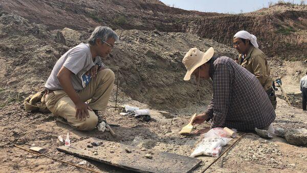 Палеонтолог Сюй Син с коллегами на раскопках